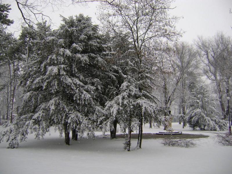 Petőfi-park, Makó