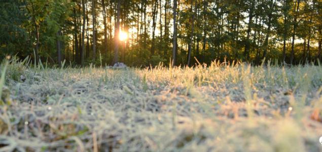Beköszönthetnek az első talajmenti fagyok