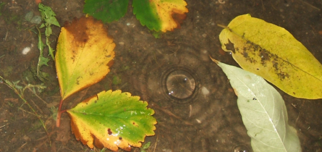 Csapadékkal érkezik a csillagászati ősz