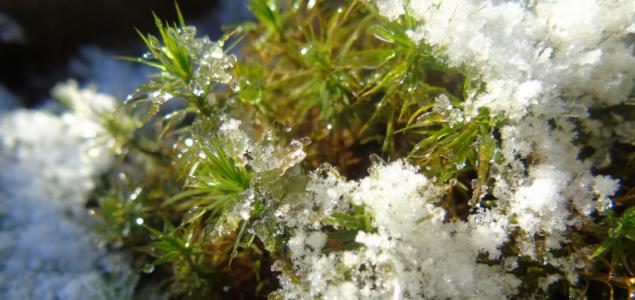 Gyenge havazást hozhat a hétvégi front a Dunántúlra